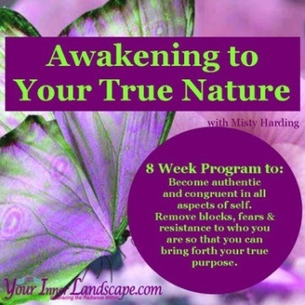 Awakening to your True Nature 8 week prvate program